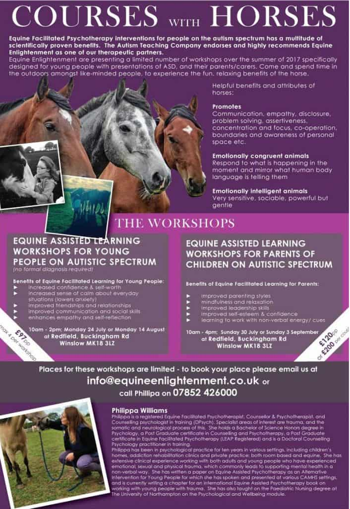 Equine psychotherapy courses